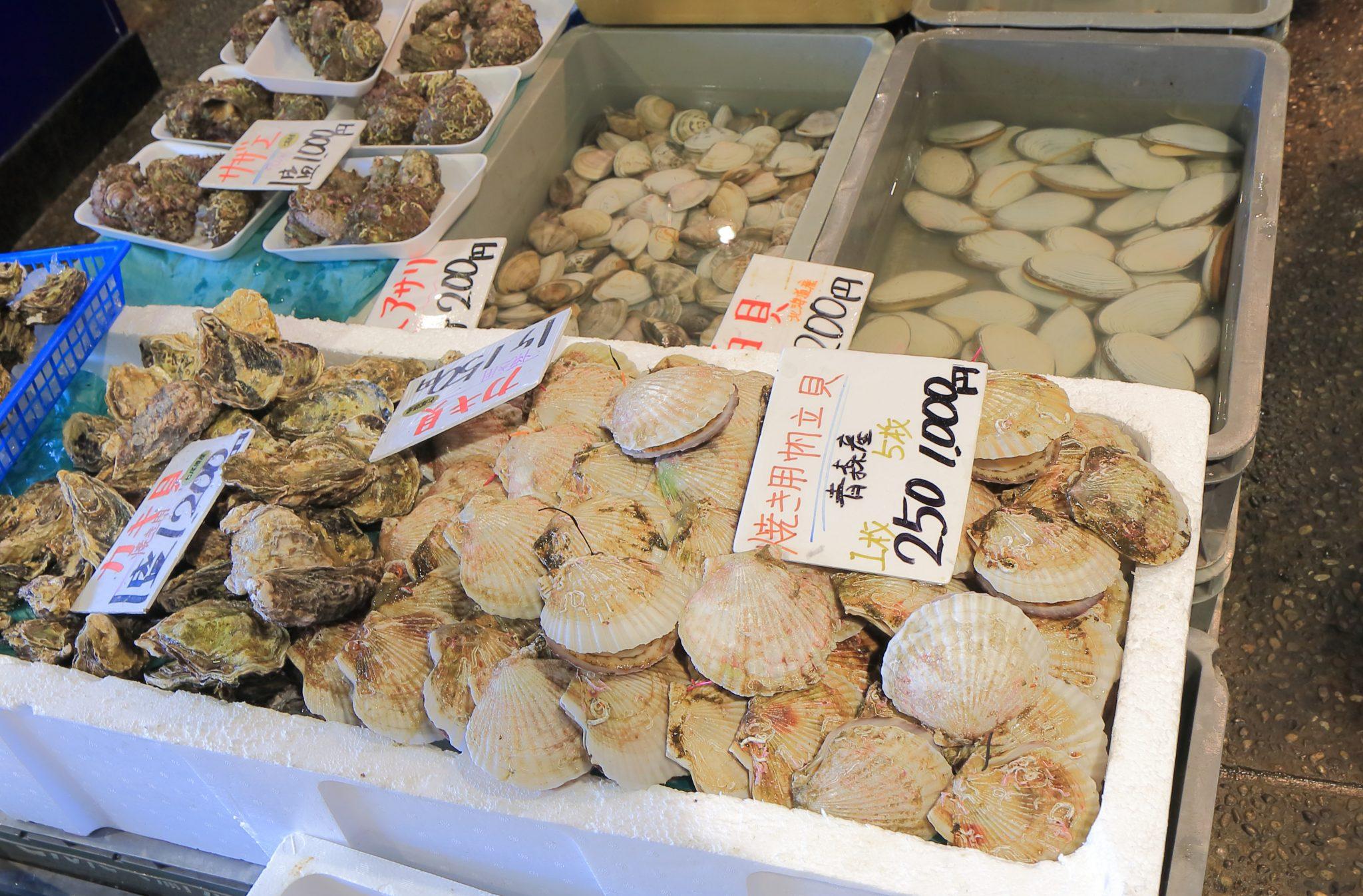 能登七尾港では、美味しい海の幸が獲れます
